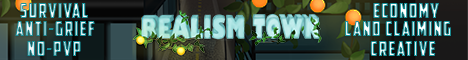 Banner for Realism Town server