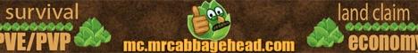 Banner for Mr Cabbage Head Minecraft server