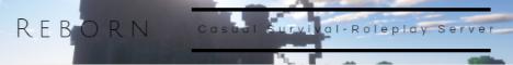 Banner for Reborn Minecraft server