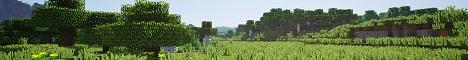 Banner for RusticMC Minecraft server