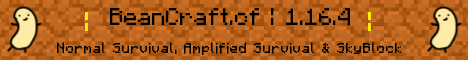 Banner for Bean Craft server