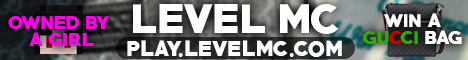 Banner for Level MC server