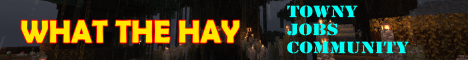 Banner for What The Hay server