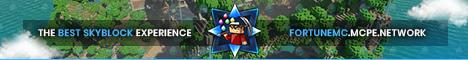 Banner for FortuneMC Minecraft server