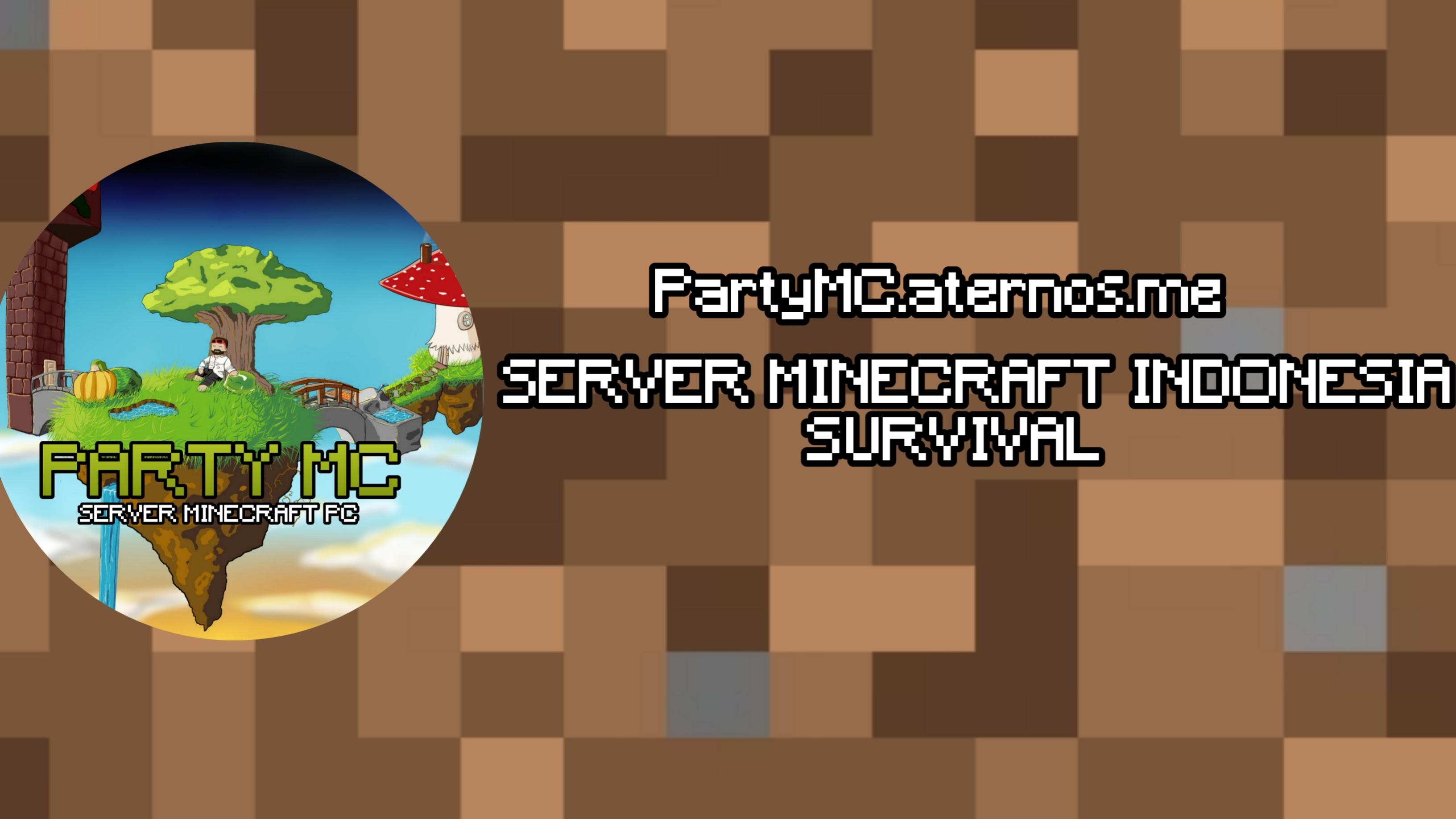 Banner for PartyMC Minecraft server