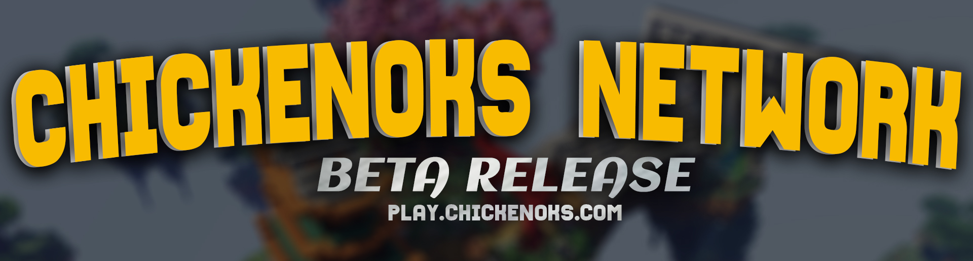 Banner for ChickenoksNetwork server
