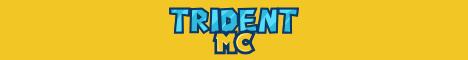Banner for TridentMC server