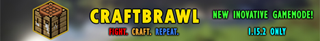 Banner for CraftBrawl server