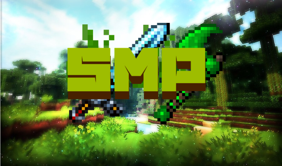 Banner for Custom Smp server