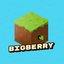 Icon for BigBerry Minecraft server